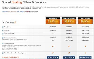 hosting con servidor barato